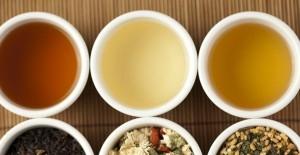 百合花茶的功效与饮用禁忌