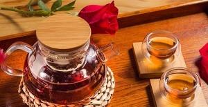 苦丁茶的功效与作用基本介绍