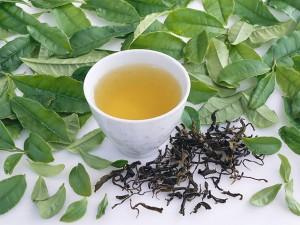 乌龙茶和铁观音有什么区别?