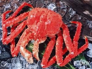 螃蟹怎么做好吃?螃蟹怎么挑选?