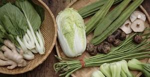 大白菜的做法 大白菜可以怎么做?