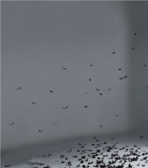 Twins2012最新专辑封面海报 大尺度半裸上身秀美背